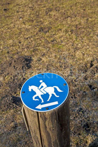 Felirat lovaglás megengedett fa természet zöld Stock fotó © meinzahn