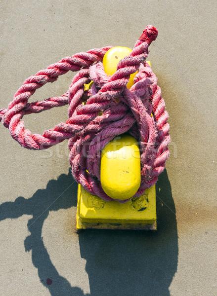 pollard with rope Stock photo © meinzahn