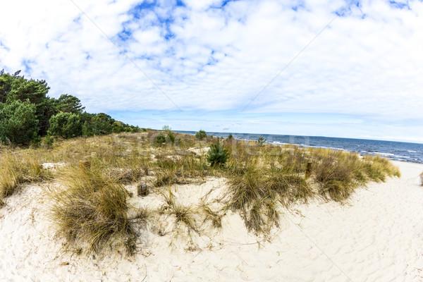 beautiful beach at baltic sea  Stock photo © meinzahn