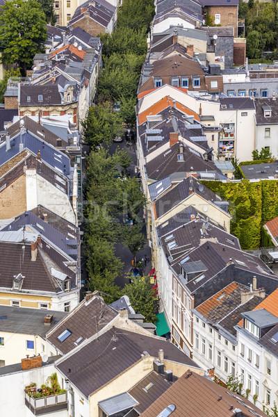 Aéreo típico calle árbol paisaje árboles Foto stock © meinzahn