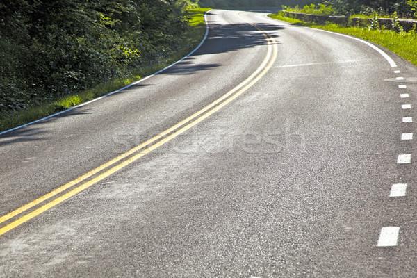 Bella scenico curve natura strada Foto d'archivio © meinzahn