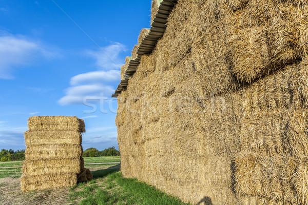 bale of straw in autumn   Stock photo © meinzahn