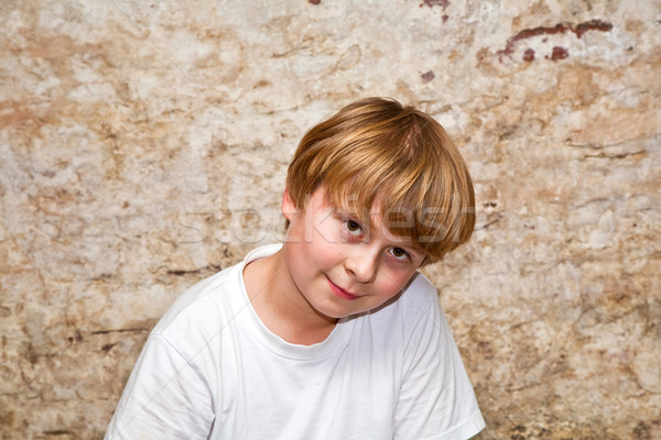 boy with light brown hair and brown eyes lookes friendly Stock photo © meinzahn