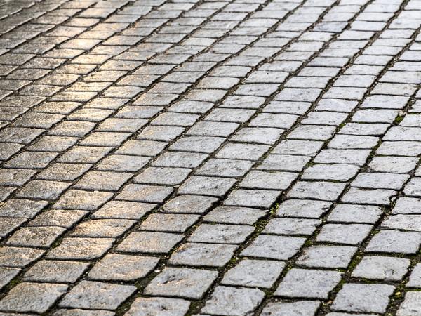 detail of cobblestone path Stock photo © meinzahn