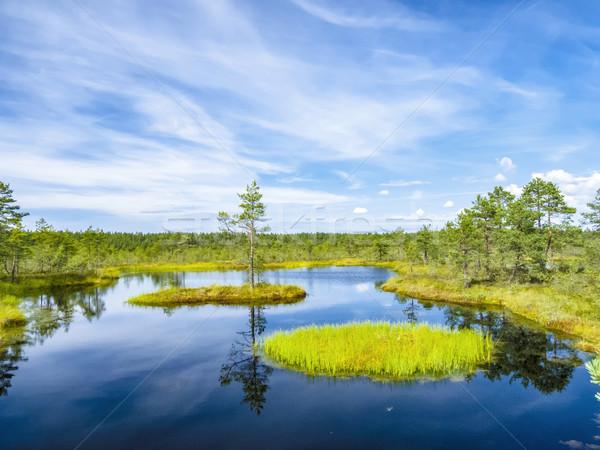 lake landscape near Tallinn Stock photo © meinzahn