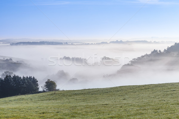 foggy rural landscape in morning in the eifel Stock photo © meinzahn