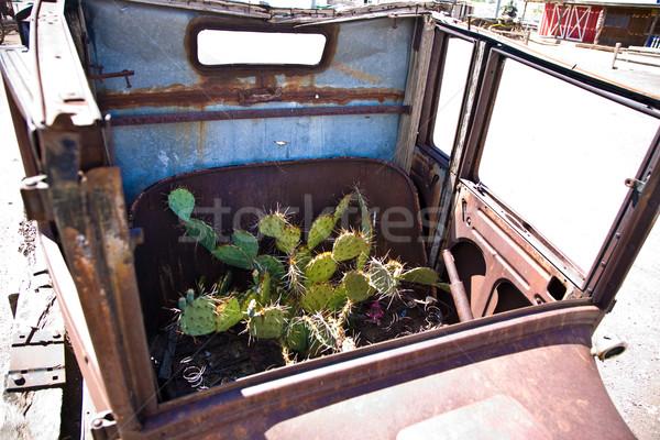 Oude rot auto planten binnenkant historisch Stockfoto © meinzahn