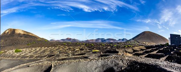 вулканический почвы известный вино стены Сток-фото © meinzahn