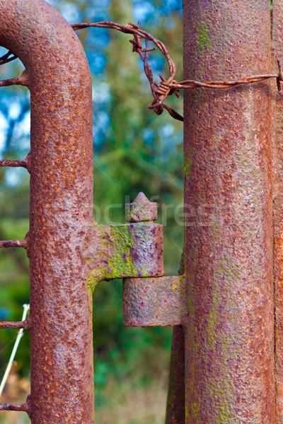 さびた ヒンジ ゲート 古い 家 抽象的な ストックフォト © meinzahn