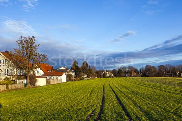 Munich nuevos campos sol paisaje Foto stock © meinzahn