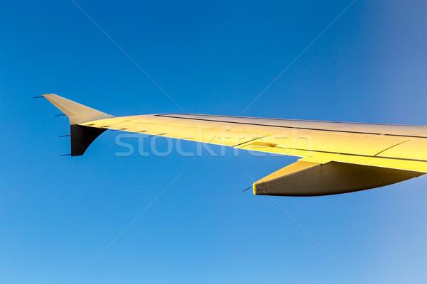 Avião asa céu blue sky tarde tarde Foto stock © meinzahn