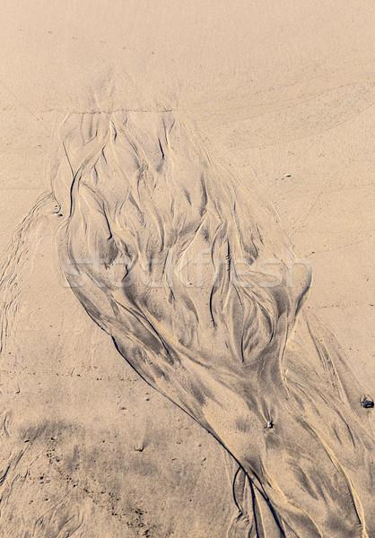 islamic pattern type texture on the sand beach  Stock photo © meinzahn