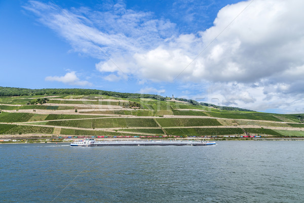 freight ship passes the vineyards at the Niederwald memoria Stock photo © meinzahn