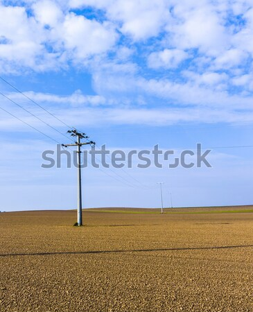beautiful landscape with acre  Stock photo © meinzahn