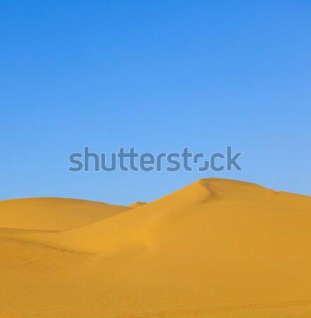 Duna amanecer desierto hermosa sol luz Foto stock © meinzahn