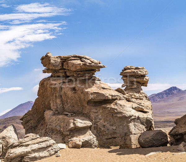 Arbol de Piedra (stone tree) is an isolated rock formation in Bo Stock photo © meinzahn