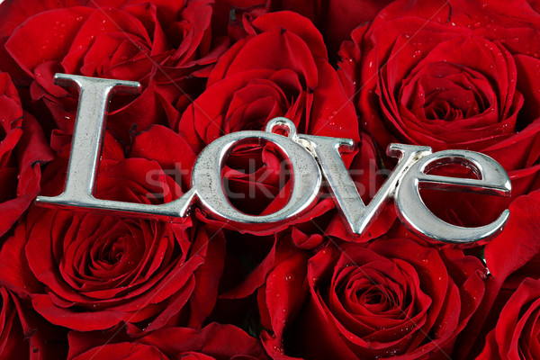 LOVE - word on red roses Stock photo © melking