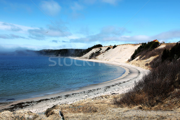 Sandy Beach Landscape In Rural Newfoundland Stock photo © melking
