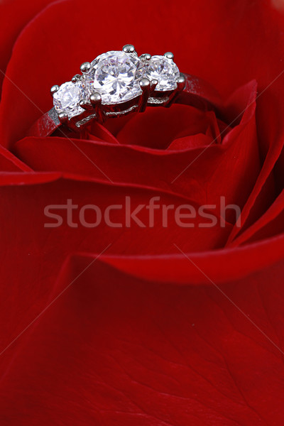 Wedding Ring in Rose, Will you marry me? Stock photo © melking