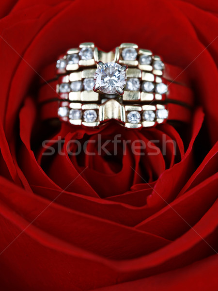 Wedding Ring in rose Stock photo © melking