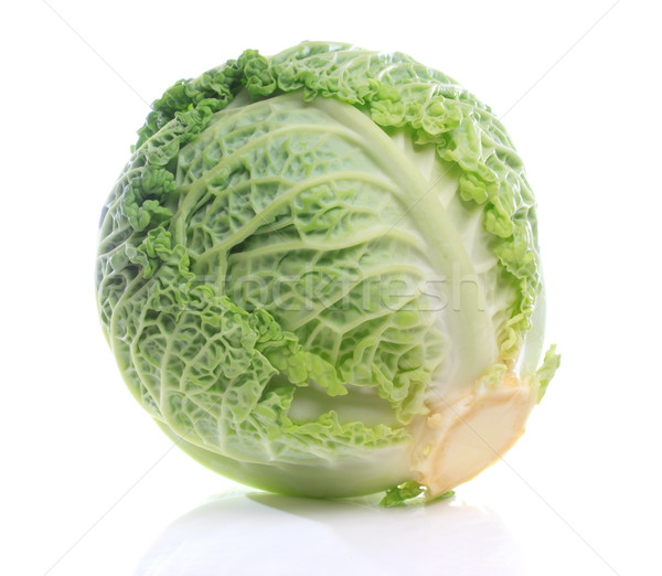 Savoy Cabbage Stock photo © Melpomene