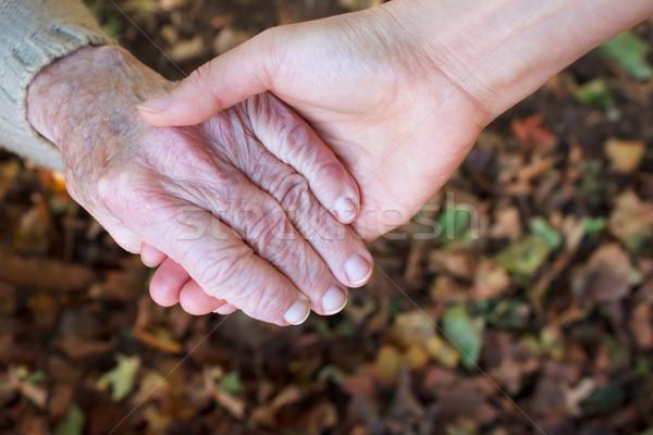 Segítő kéz ősz fiatal idős kéz a kézben őszi levelek Stock fotó © Melpomene