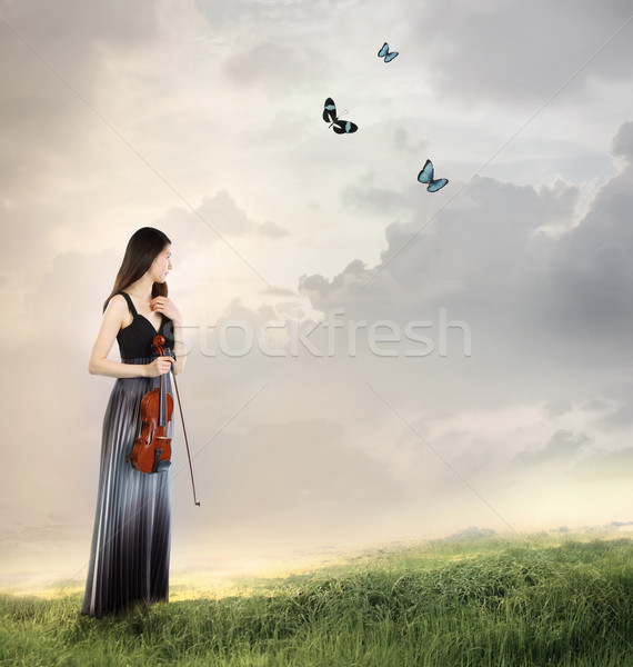 Violinist on a Mountain Top Stock photo © Melpomene