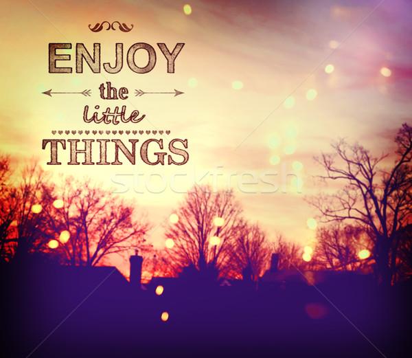 Enjoy the Little Things Stock photo © Melpomene