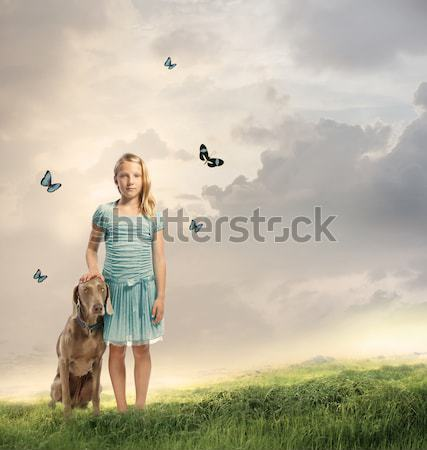 Photo stock: Petite · fille · violon · Fantasy · paysage · papillons · ciel