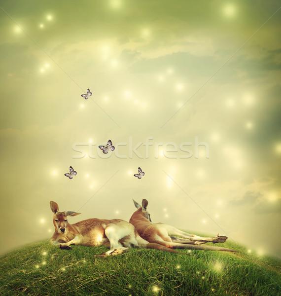 Fantázia tájkép kettő pillangók égbolt pillangó Stock fotó © Melpomene