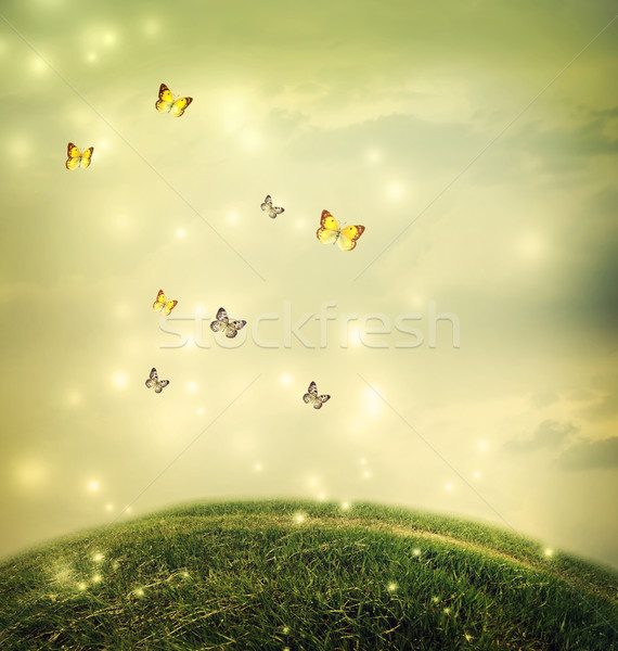 Butterflies in the fantasy hilltop landscape Stock photo © Melpomene