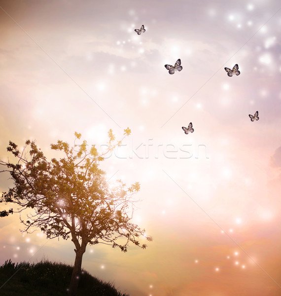 Stock photo: Tree silhouette with butterflies in twilight