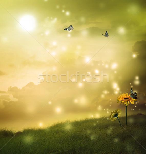 желтый бабочки фантазий холме луна трава Сток-фото © Melpomene