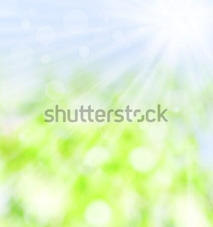 Primavera viga sol verde azul Foto stock © Melpomene