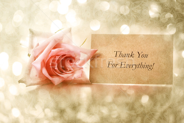Thank you card with vintage rose Stock photo © Melpomene
