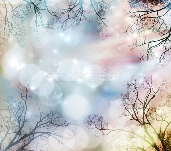 abstrakten baum grenze lichter himmel hintergrund stock foto melpomene 2286513. Black Bedroom Furniture Sets. Home Design Ideas