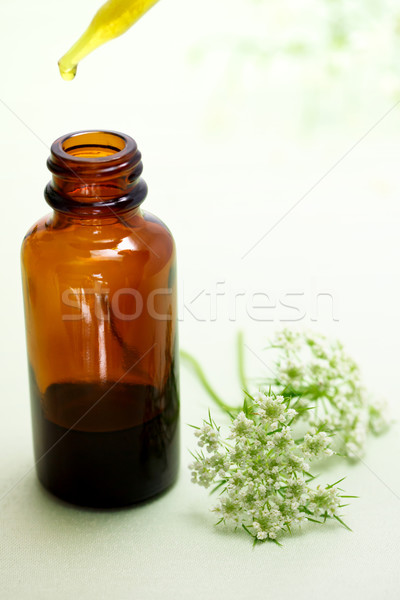 Herbal medicine with dropper bottle Stock photo © Melpomene