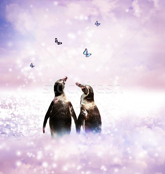 Penguin couple in fantasy landscape Stock photo © Melpomene