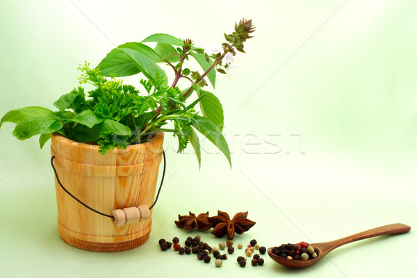 Collection of herbs with peppercorn Stock photo © Melpomene