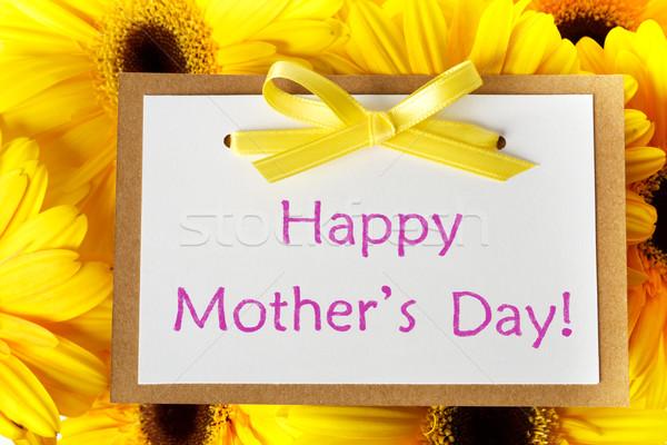 Mães dia cartão mensagem amarelo flor Foto stock © Melpomene