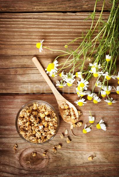 Secas camomila chá fresco flores rústico Foto stock © Melpomene