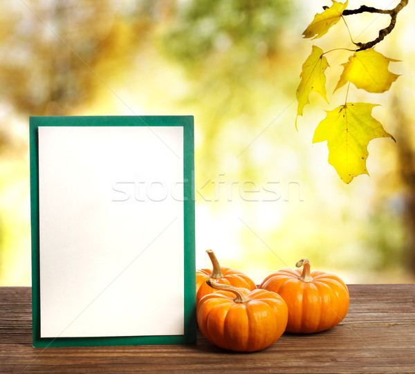 Greeting card with small pumpkins Stock photo © Melpomene