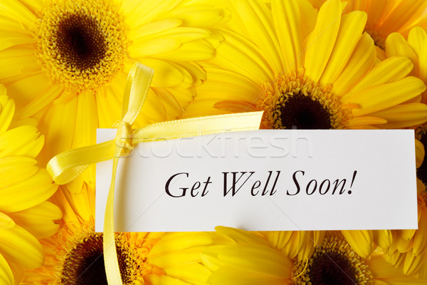 Goed spoedig kaart Geel bericht daisy Stockfoto © Melpomene