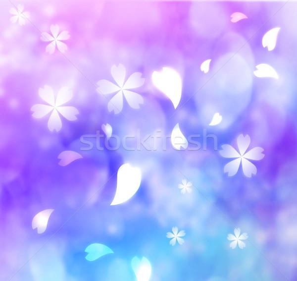 Virág szirom lila kék rózsaszín virág rózsaszín Stock fotó © Melpomene