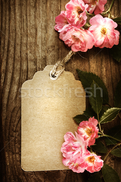 Handmade tag with robin hood roses  Stock photo © Melpomene
