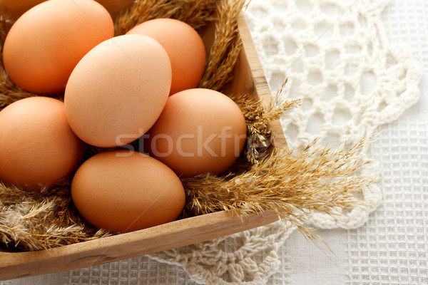 brown eggs  Stock photo © Melpomene