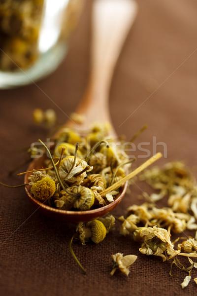 Aszalt kamilla virágok fakanál levél gyógyszer Stock fotó © Melpomene