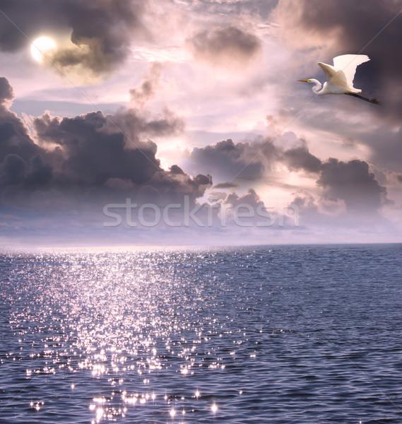Beautiful white egret flying over the ocean Stock photo © Melpomene