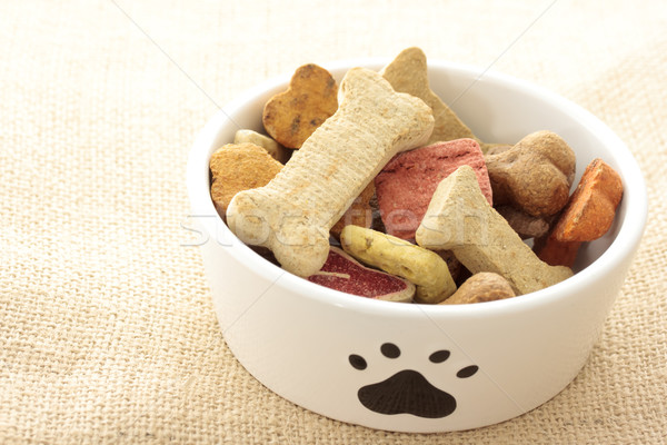 Dog food in bowl Stock photo © Melpomene