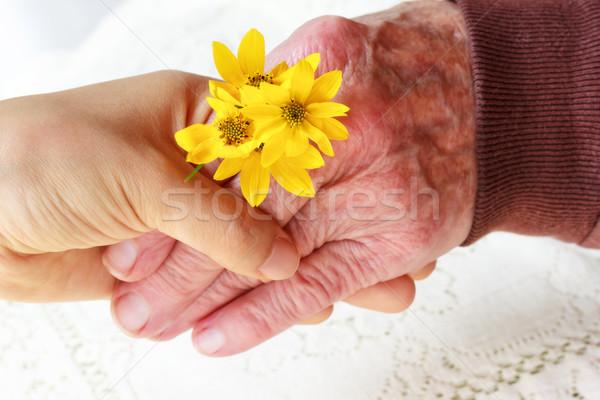 Stockfoto: Senior · jonge · dames · holding · handen · dame · jonge · vrouw